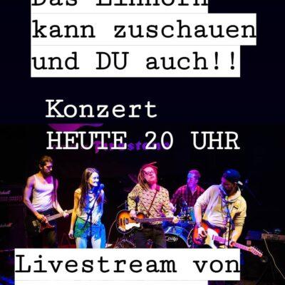 Münchner Band FUUN - fuunmusic - Online Konzerte - Kulturpolitik die Grünen Bayern Sanne Kurz